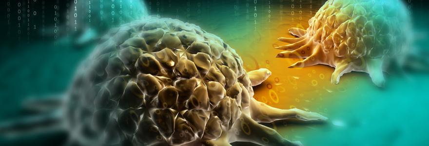 Les cancers hématopoïétiques